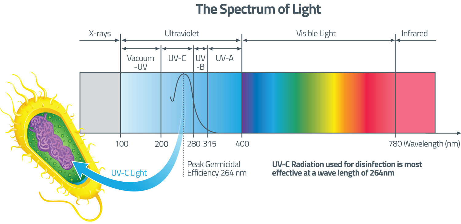 Knowledge Centre Learn All About Uv Disinfection